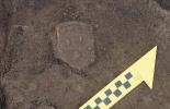 Абрикосовское поселение, 2020. Раскоп VI. Вид сверху на фрагмент концевого диска кровельной черепицы